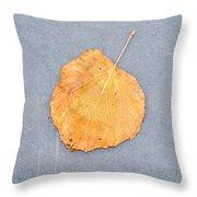 Leaf On Granite 9 - Square Throw Pillow