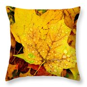 Leaf Portait 1 Throw Pillow