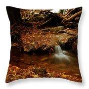 Leaf Splatter Throw Pillow