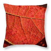 Leaf Venation Pattern 1 Throw Pillow