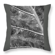 Leaf Venation With Water Beads Throw Pillow
