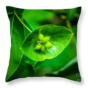 Leaf With Seeds Throw Pillow