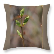 Leafing Out Throw Pillow