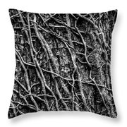 Leafless Ivy Throw Pillow