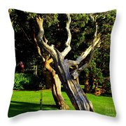Leaning Cedars Of West Chop Throw Pillow