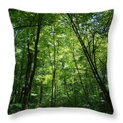 Leaning Into The Light Throw Pillow