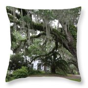 Leaning Live Oak Throw Pillow