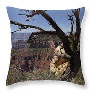 Leaning On The Everlasting Arms Throw Pillow