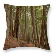 Leaning Over The Trail Throw Pillow