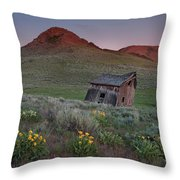 Leaning Shed Throw Pillow