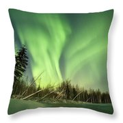Leaning Spruce  Throw Pillow