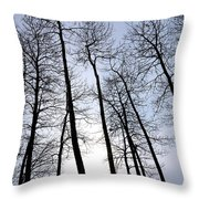 Leaning Tall Throw Pillow