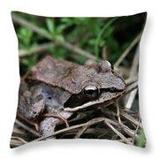 Wood Frog  Throw Pillow