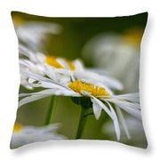 Leaning Towards The Light Throw Pillow
