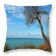 Leaning Tree Over Lake Throw Pillow