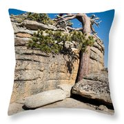 Leaning Tree Throw Pillow