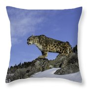 Leapard Look Out Throw Pillow