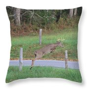 Leaping Buck In Smoky Mountains Throw Pillow by Dan Sproul