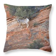 Learning How To Rock Climb Zion Throw Pillow