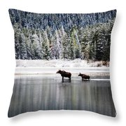 Learning The Ropes Throw Pillow