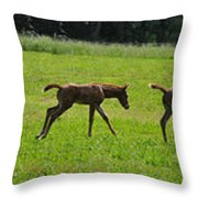 Learning To Run Throw Pillow