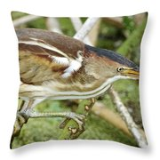 Least Bittern Female Feeding Throw Pillow