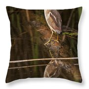 Least Bittern Pictures 17 Throw Pillow