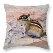 Least Chipmunk #2 Throw Pillow