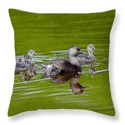 Least Grebe And Young Throw Pillow