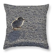 Least Tern Chick Throw Pillow