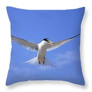 Least Tern Flying Throw Pillow