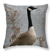 Leave Wildlife Wild And Alive Throw Pillow