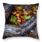 Leaves And Root Throw Pillow
