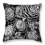 Leaves And Succulents Throw Pillow