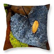Leaves At Oak Openings Throw Pillow