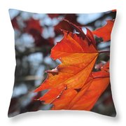Leaves Backlit 3 Throw Pillow