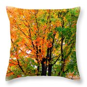 Leaves Changing Colors Throw Pillow