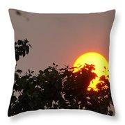 Leaves Cradling Setting Sun Throw Pillow