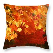 Fall Leaves In Afternoon Sun Throw Pillow