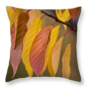 Leaves In Fall Throw Pillow