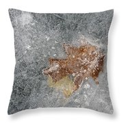Leaves In Ice Throw Pillow