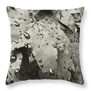 Leaves In Rain Throw Pillow