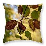 Leaves In The Breeze Throw Pillow