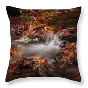 Leaves In The Creek Throw Pillow