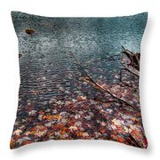 Leaves In The Lake Throw Pillow