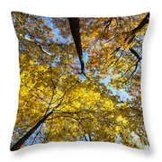 Leaves In The Sky Throw Pillow