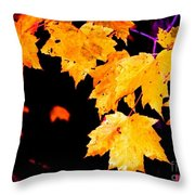 Leaves Of Maple Throw Pillow