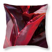 Leaves Of The Red Ti Plant Throw Pillow