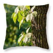 Leaves Under The Sun Throw Pillow