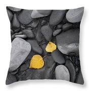 Leaves With Rocks Throw Pillow